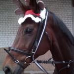 Weihnachtsquadrille1